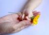 Ден на спонтанните актове на доброта