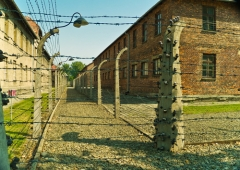 Международен ден на освобождението на нацистките концентрационни лагери