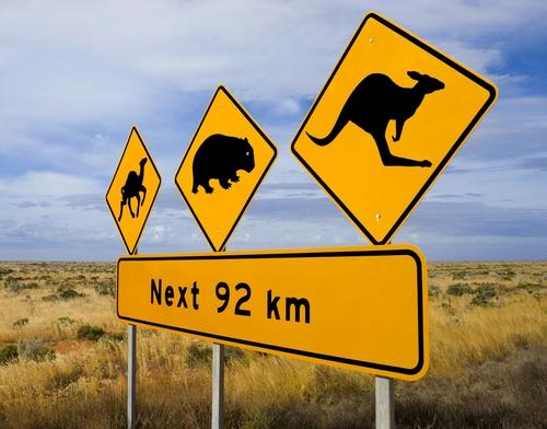 По пътещата на Австралия