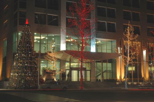 Коледна елха на улица в Баку, Азербайджан